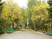 nizhneivkino_territoriya2_600
